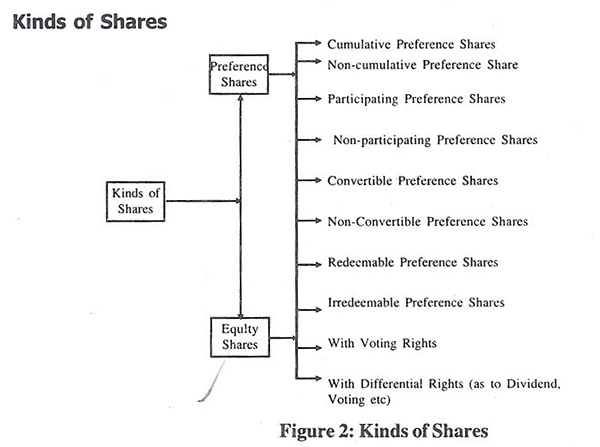kinds of shares